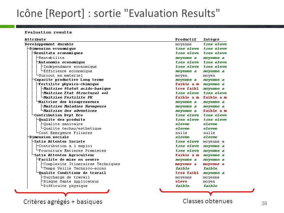 Icône [Report] : sortie Evaluation Results